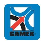 gamex.jpg